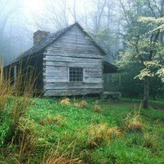 Как арендовать жилье в Черногории